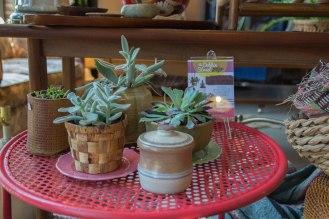 Dobbin Street Vintage Co-op - Vintage shop - Greenpoint - plants